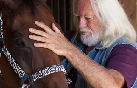 Zoran Hochstatter healing horses
