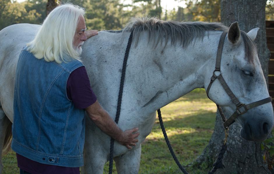 Zoran Hochstatter healing a horse's heart