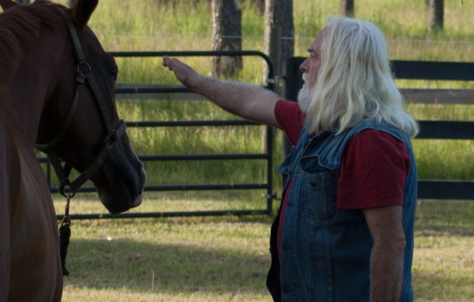 Zoran does energy healing on a horse's eyes