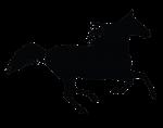 horse icon copy